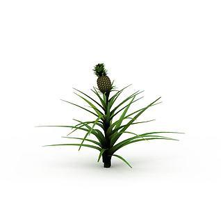 菠萝树3d模型