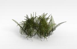3d热带灌木模型