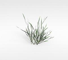 草模型3d模型