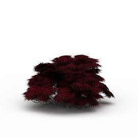 红色灌木模型