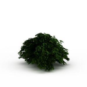 绿色灌木丛模型
