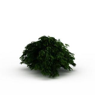 绿色灌木丛3d模型