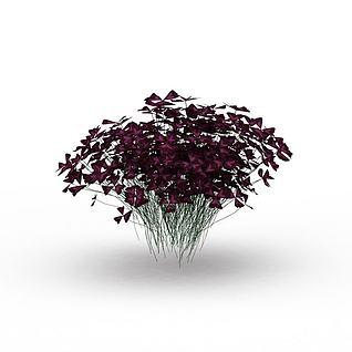 蝴蝶花植物3d模型
