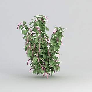 公园装饰绿植3d模型