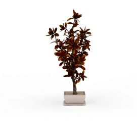 3d盆摘<font class='myIsRed'>植物</font>模型