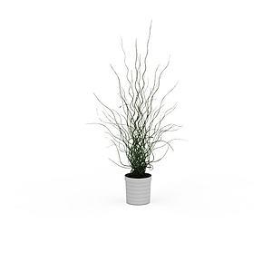 簡易花盆陳設品模型3d模型