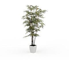 竹子盆景模型3d模型