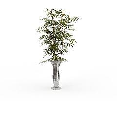 竹子观赏插花模型3d模型