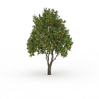桔子树3d模型