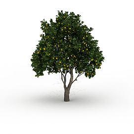 茂盛桔子<font class='myIsRed'>树</font>3d模型