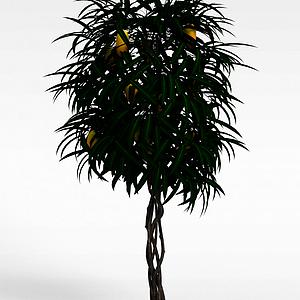 3d園林植物<font class='myIsRed'>水果</font>樹模型