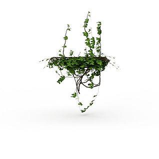 室内藤蔓3d模型