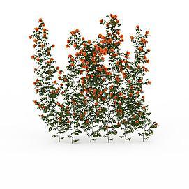 公园藤蔓花卉模型