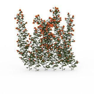 公园藤蔓花卉3d模型