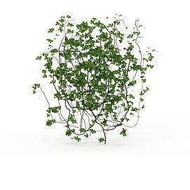 园林装饰藤蔓模型
