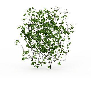 园林装饰藤蔓3d模型