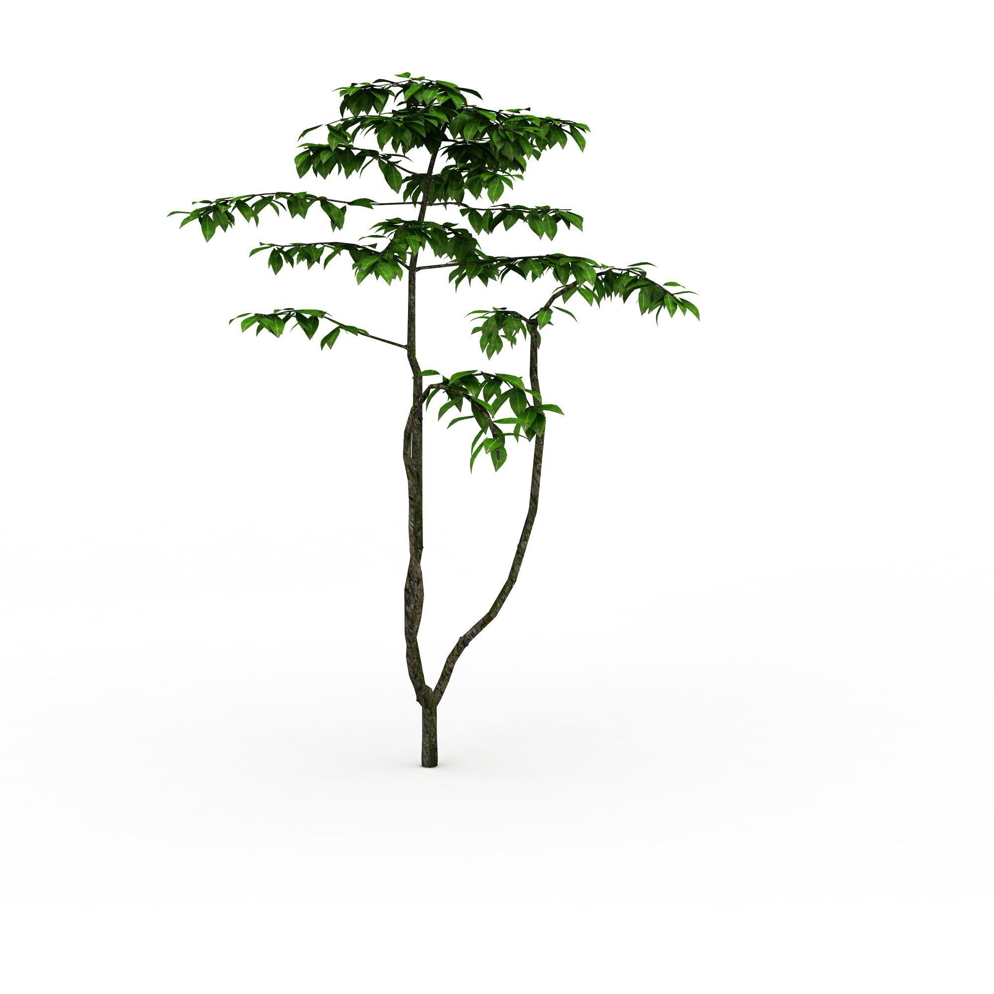 绿色树木图片_绿色树木png图片素材_绿色树木png高清