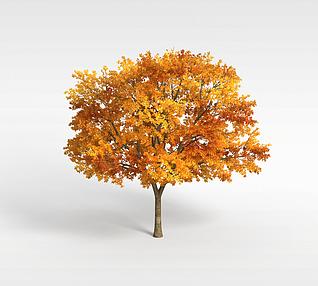 3d秋冬树模型