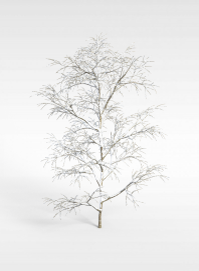 3d<font class='myIsRed'>树</font>挂模型