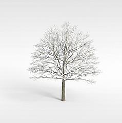 雾凇模型3d模型