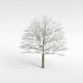 3d雾凇模型