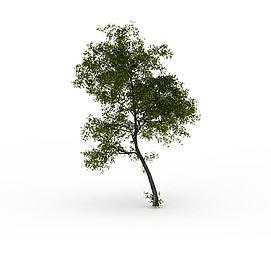 3d小<font class='myIsRed'>树</font>模型