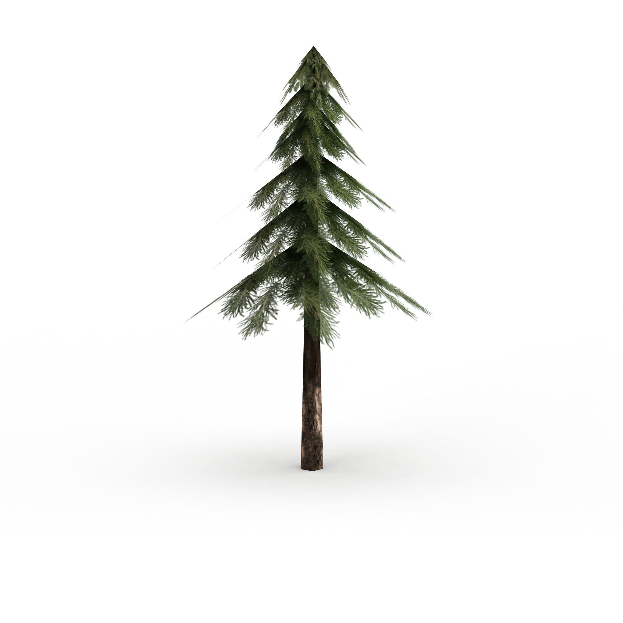 松树高清图下载