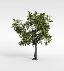 3d绿<font class='myIsRed'>树</font>模型