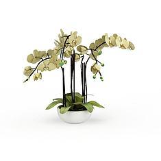 鲜花盆栽3D模型3d模型