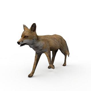 狐狸3d模型