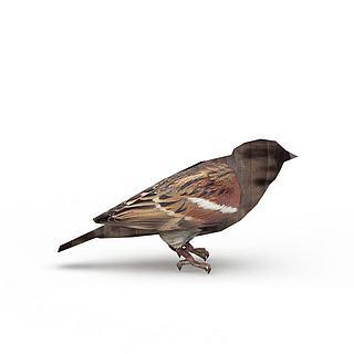 飞行<font class='myIsRed'>动物</font>鸟3d模型