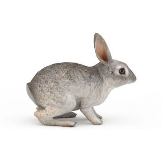 动物灰毛兔子3d模型3d模型