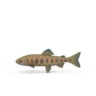 海鱼3d模型