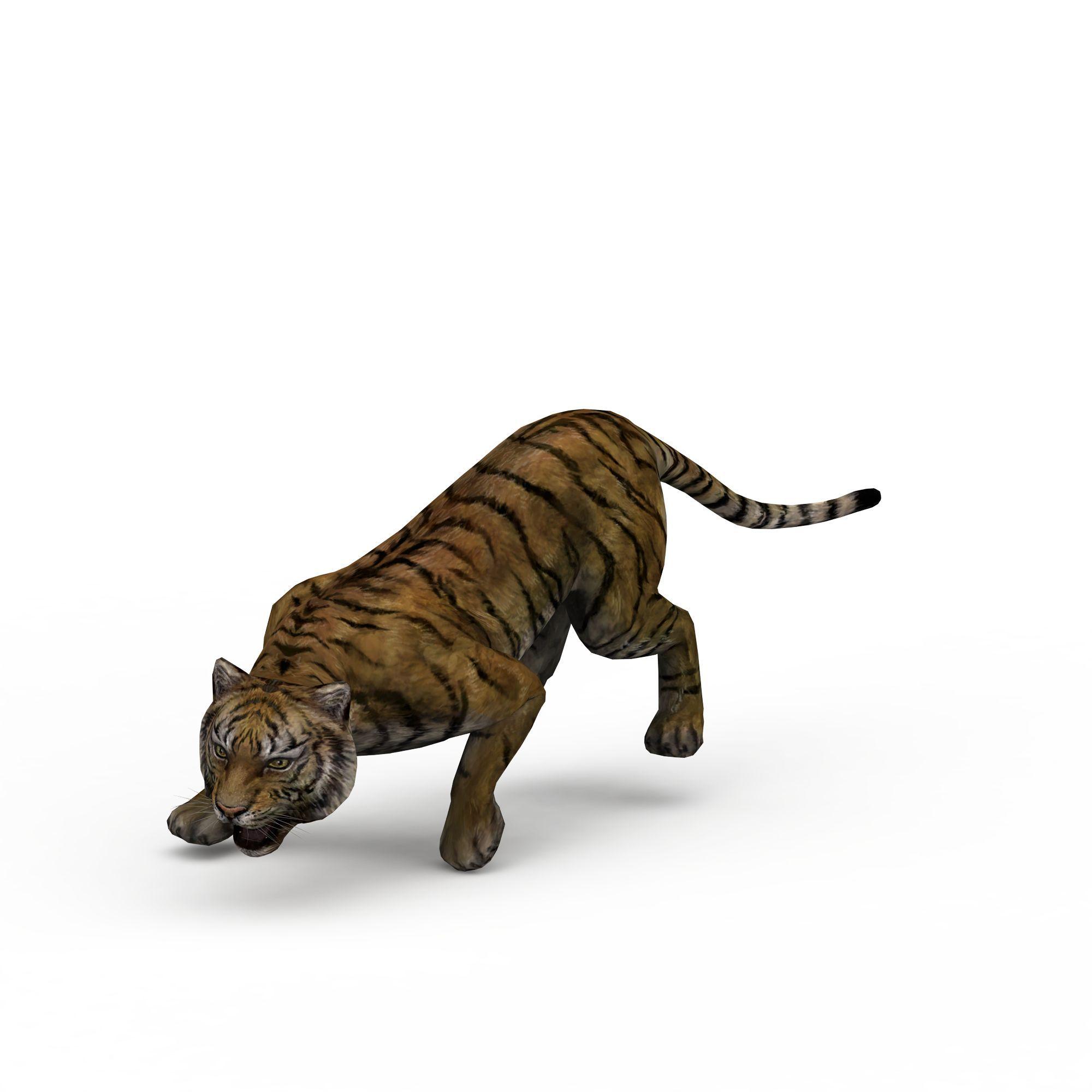 动物 爬行类 老虎3d模型
