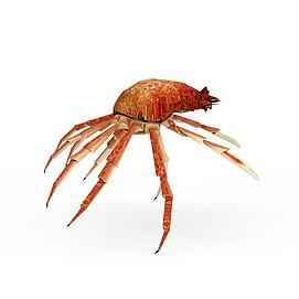 动物螃蟹海蟹模型