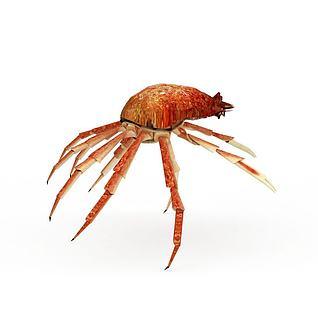 动物螃蟹海蟹3d模型3d模型