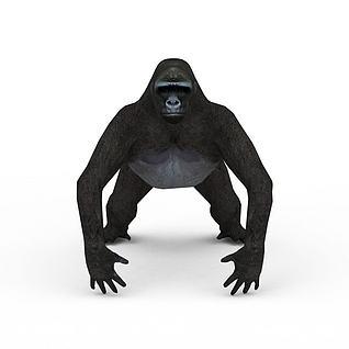 猩猩3d模型
