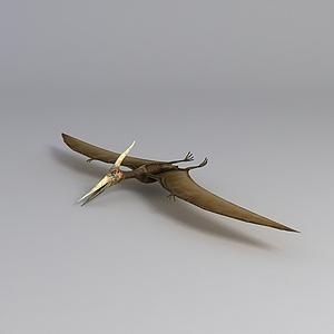 飞行恐龙模型