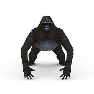 大猩猩3d模型