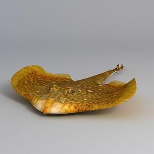 多宝鱼3d模型