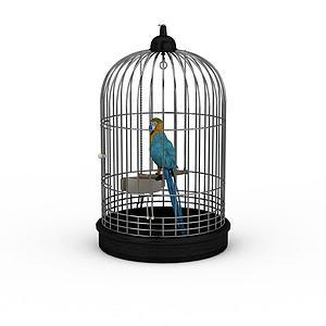 蓝?#24179;?#21018;鹦鹉模型