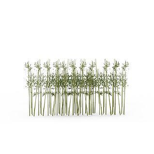 公园竹子3d模型