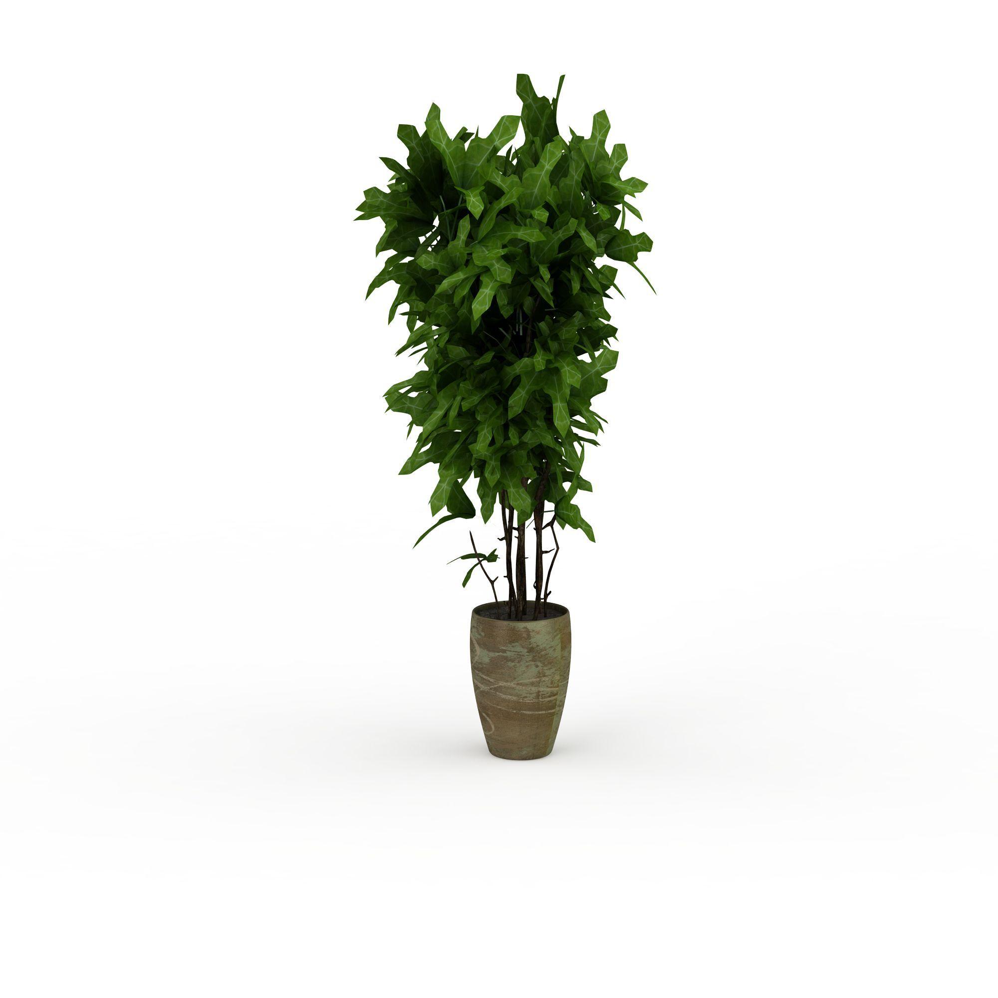 办公室绿植png高清图  办公室绿植高清图详情 设计师 3d学院 模型名称