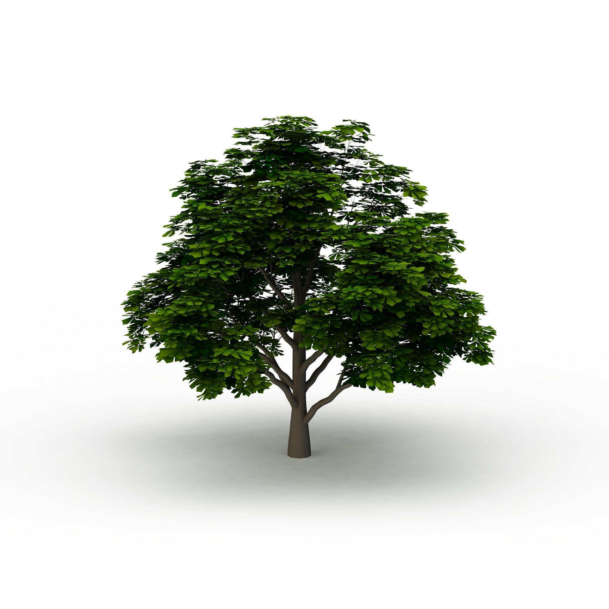 手工制作立体纸盒小树
