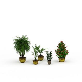 室内盆景3d模型