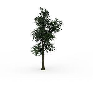 3d游戏树木模型