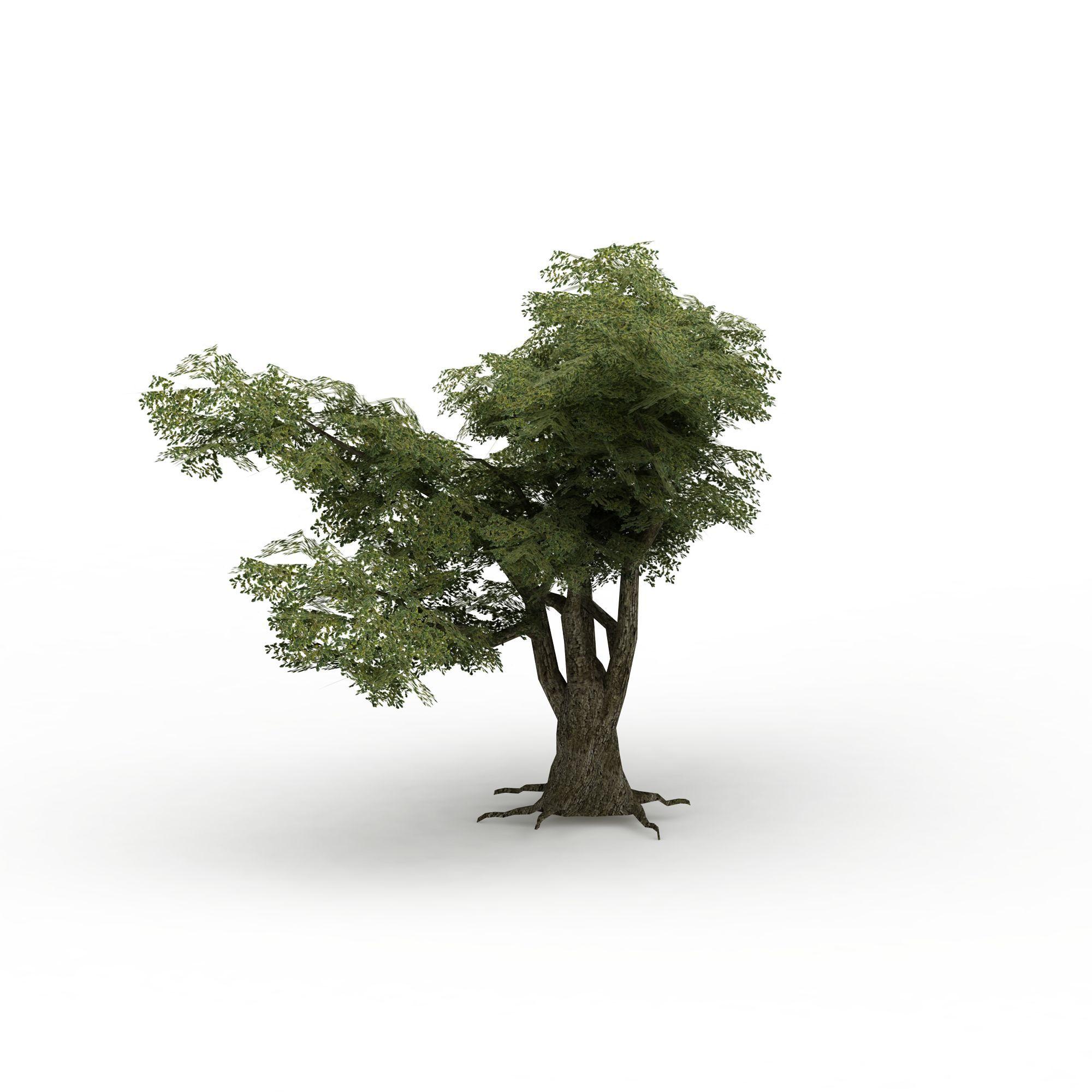 游戏树木高清图下载