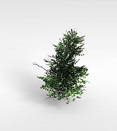 3d<font class='myIsRed'>游戏</font>树木模型