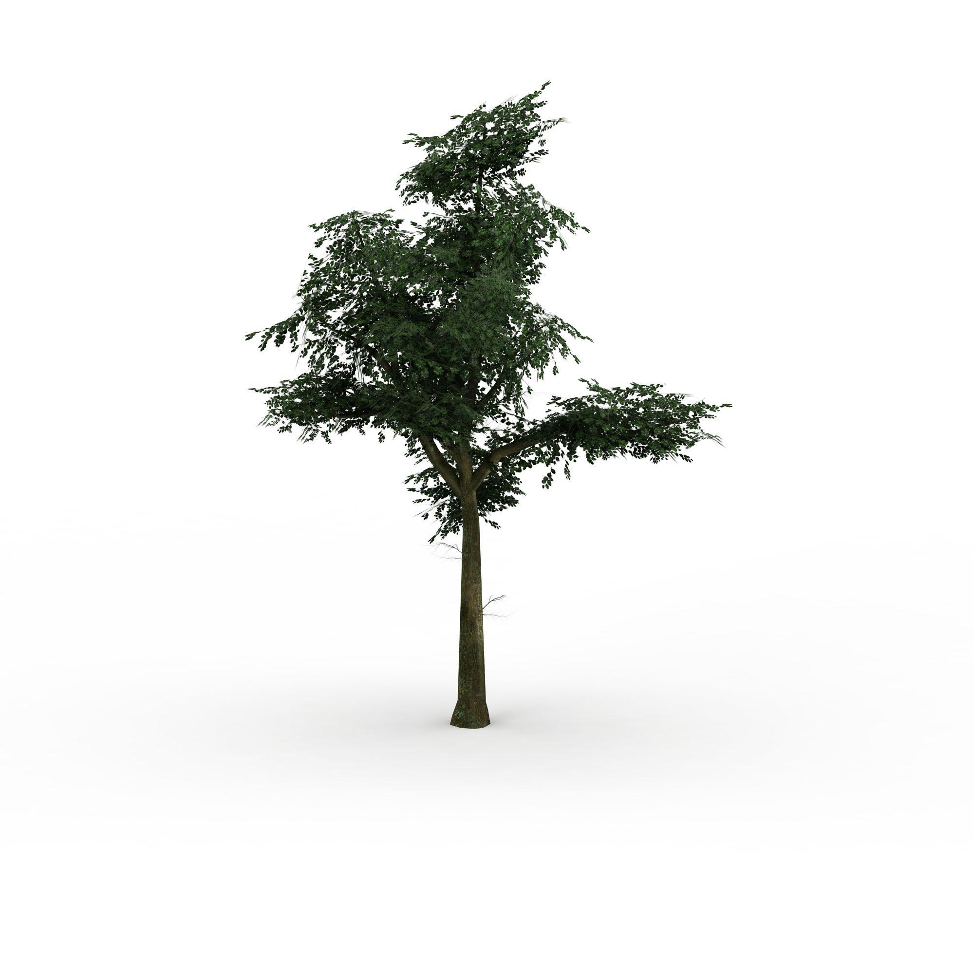 绿树图片_绿树png图片素材_绿树png高清图下载