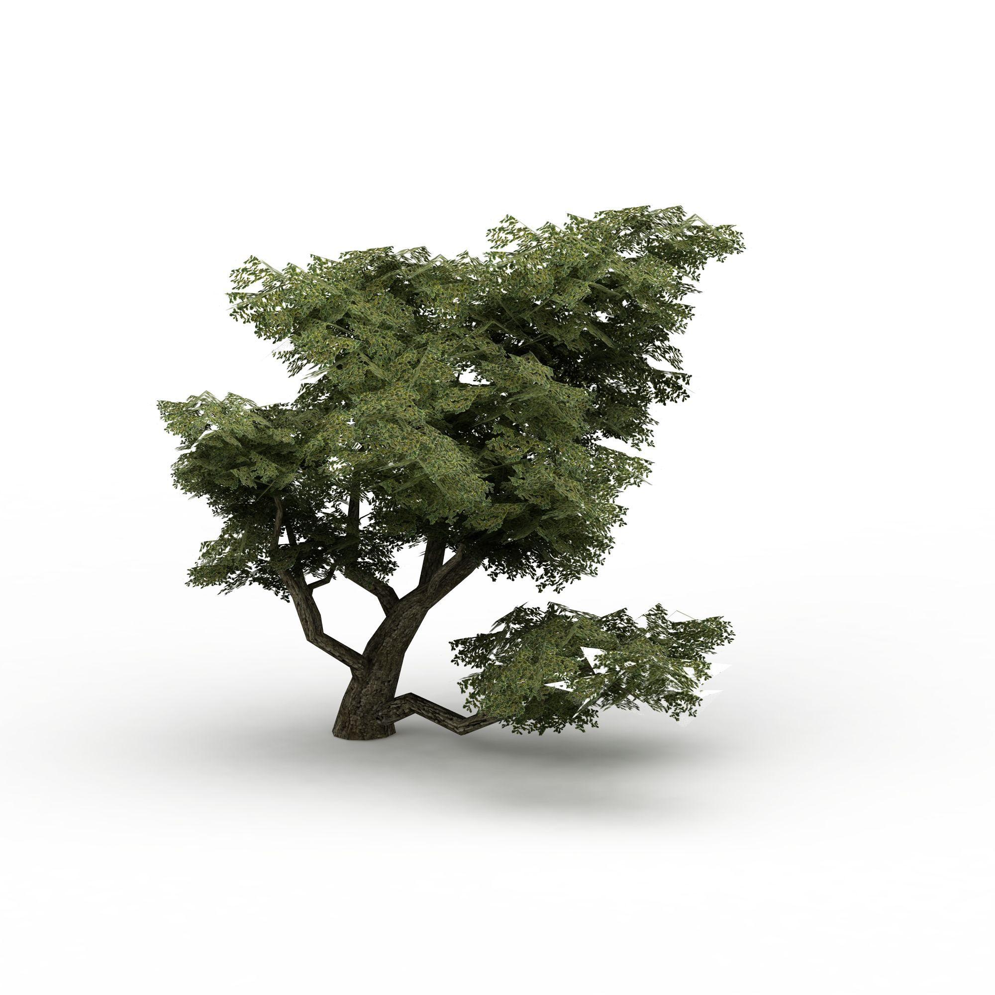关键词:公园装饰树3d模型树3d模型松树3d模型 相关图片素材下载
